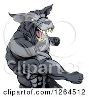 Clipart Of A Vicious Muscular Wolf Man Punching Royalty Free Vector Illustration by AtStockIllustration