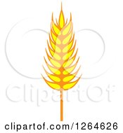 Clipart Of A Whole Grain Ear Royalty Free Vector Illustration