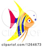 Clipart Of A Colorful Marine Angel Fish Royalty Free Vector Illustration