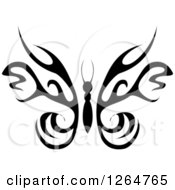 Black And White Tribal Butterfly