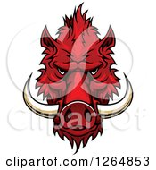 Clipart Of A Red Vicious Boar Mascot Head Royalty Free Vector Illustration
