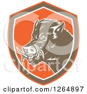 Clipart Of A Retro Wild Boar Pig In An Orange Brown And White Shield Royalty Free Vector Illustration