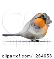 Clipart Of A 3d Red Robin Bird Wearing Sunglasses And Walking Royalty Free Illustration by Julos