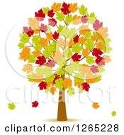 Clipart Of A Fall Tree With Red Green And Orange Autumn Leaves Royalty Free Vector Illustration