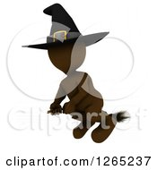 Clipart Of A 3d Brown Witch Flying On A Broomstick Royalty Free Illustration by KJ Pargeter
