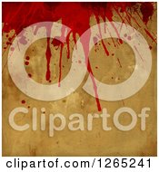 Clipart Of A Halloween Horror Background Of Blood Splatters Royalty Free Illustration