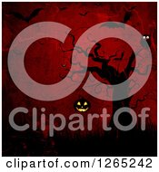 Clipart Of A Spooky Tree With An Owl And Hanging Jackolantern Pumpkin Over Dark Grungy Red And Vampire Bats Royalty Free Illustration by KJ Pargeter