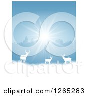 Clipart Of White Silhouetted Alert Deer In The Snow Against Trees And Sunshine Royalty Free Vector Illustration