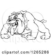 Clipart Of A Black And White Aggressive Panting Bulldog Royalty Free Vector Illustration by Dennis Holmes Designs
