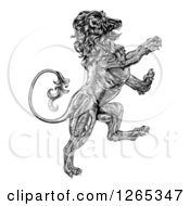 Clipart Of A Black And White Engraved Vintage Rampant Lion Royalty Free Vector Illustration