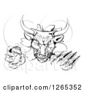 Clipart Of A Black And White Aggressive Clawed Bull Breaking Through A Wall Royalty Free Vector Illustration