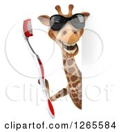 Clipart Of A 3d Giraffe Wearing Sunglasses And Holding A Giant Toothbrush Around A Sign Royalty Free Illustration
