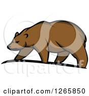 Clipart Of A Brown Bear Walking Royalty Free Vector Illustration