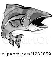 Grayscale Salmon Fish