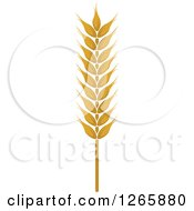 Clipart Of A Strand Of Wheat Royalty Free Vector Illustration