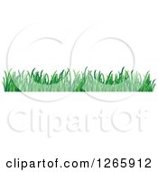 Clipart Of A Green Grass Border Royalty Free Vector Illustration by Vector Tradition SM