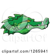 Green Crocodile Face In Profile With Sharp Teeth