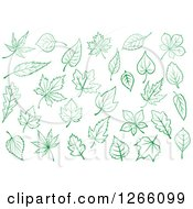 Clipart Of Green Leaf Designs Royalty Free Vector Illustration by Vector Tradition SM