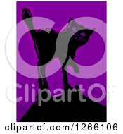 Clipart Of A Black Cat And Shadow Over Purple Royalty Free Vector Illustration