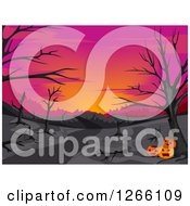 Clipart Of A Pink Sunset With Bare Trees In The Woods And Halloween Jackolanterns Royalty Free Vector Illustration