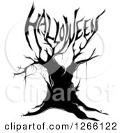 Clipart Of A Black Bare Tree With A Spider Web And Branches Forming HALLOWEEN Royalty Free Vector Illustration