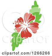 Clipart Of A Red Hibiscus Flower And Green Leaves Royalty Free Vector Illustration