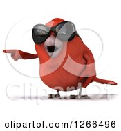 Clipart Of A 3d Red Bird Wearing Sunglasses And Pointing Royalty Free Illustration