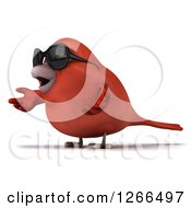 Clipart Of A 3d Red Bird Wearing Sunglasses And Presenting Royalty Free Illustration