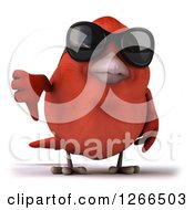Clipart Of A 3d Red Bird Wearing Sunglasses And Holding A Thumb Down Royalty Free Illustration