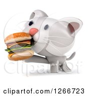 Clipart Of A 3d White Kitten Eating A Double Cheeseburger Royalty Free Illustration