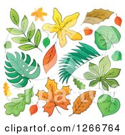 Clipart Of Autumn Leaves Royalty Free Vector Illustration by visekart