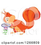 Clipart Of A Cute Orange Squirrel Looking At A Flower Through A Magnifying Glass Royalty Free Vector Illustration