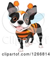 Clipart Of A Cute Boston Terrier Dog In A Bug Halloween Costume Royalty Free Vector Illustration by Pushkin