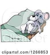 Gray Mouse Laying In Bed