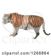 Clipart Of A Tiger In Profile Royalty Free Vector Illustration by dero