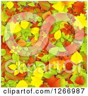 Clipart Of A Background Of Colorful Autumn Leaves Royalty Free Vector Illustration by vectorace