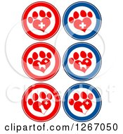 Clipart Of Red Blue And White Circles Of Heart Shaped Paw Prints Dogs And Veterinary Crosses Royalty Free Vector Illustration