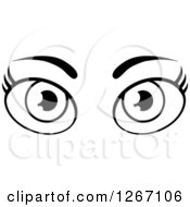 Clipart Of A Black And White Pair Of Female Eyes And Brows Royalty Free Vector Illustration by Hit Toon