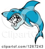 Clipart Of A Vicious Attacking Blue And White Shark Royalty Free Vector Illustration
