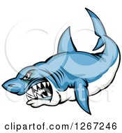 Clipart Of A Mad Vicious Blue And White Shark Royalty Free Vector Illustration