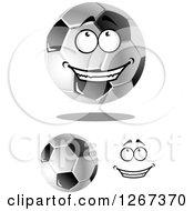 Grayscale Soccer Balls