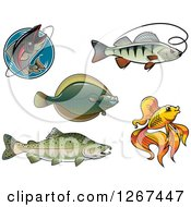 Clipart Of Fishing And Fish Designs Royalty Free Vector Illustration by Vector Tradition SM
