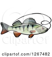 Clipart Of A Perch Fish With A Line Royalty Free Vector Illustration