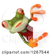 3d Green Female Springer Frog Pointing Around A Sign