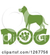 Clipart Of A Green Silhouetted Canine Over DOG Text With A Heart Shaped Paw Print In The Letter O Royalty Free Vector Illustration