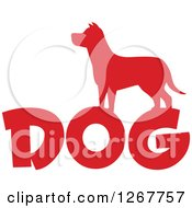 Clipart Of A Red Silhouetted Dog Over Text Royalty Free Vector Illustration