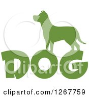 Clipart Of A Green Silhouetted Dog Over Text Royalty Free Vector Illustration