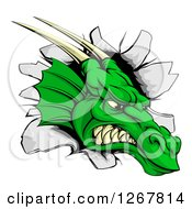 Clipart Of A Fierce Green Dragon Mascot Head Breaking Through A Wall Royalty Free Vector Illustration