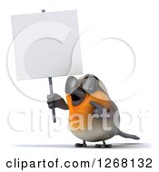 Clipart Of A 3d Red Robin Bird Wearing Sunglasses Holding And Pointing Up At A Blank Sign Royalty Free Illustration