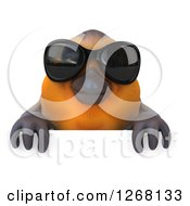 Clipart Of A 3d Red Robin Bird Wearing Sunglasses Over A Sign Royalty Free Illustration